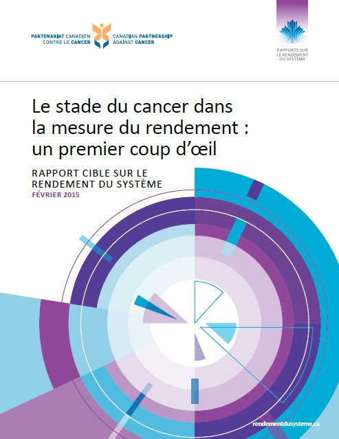 Cover image of  Le stade du cancer dans la mesure du rendement : un premier coup d'œil